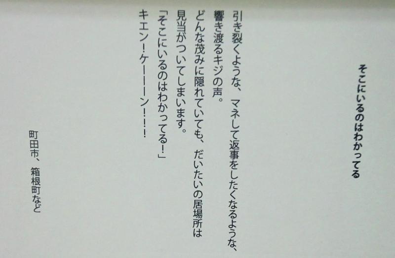 f:id:ryuuzanshi:20150220160844j:image