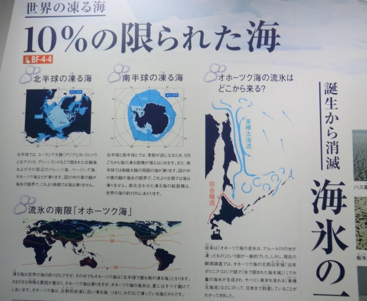 f:id:ryuuzanshi:20200229143119j:plain