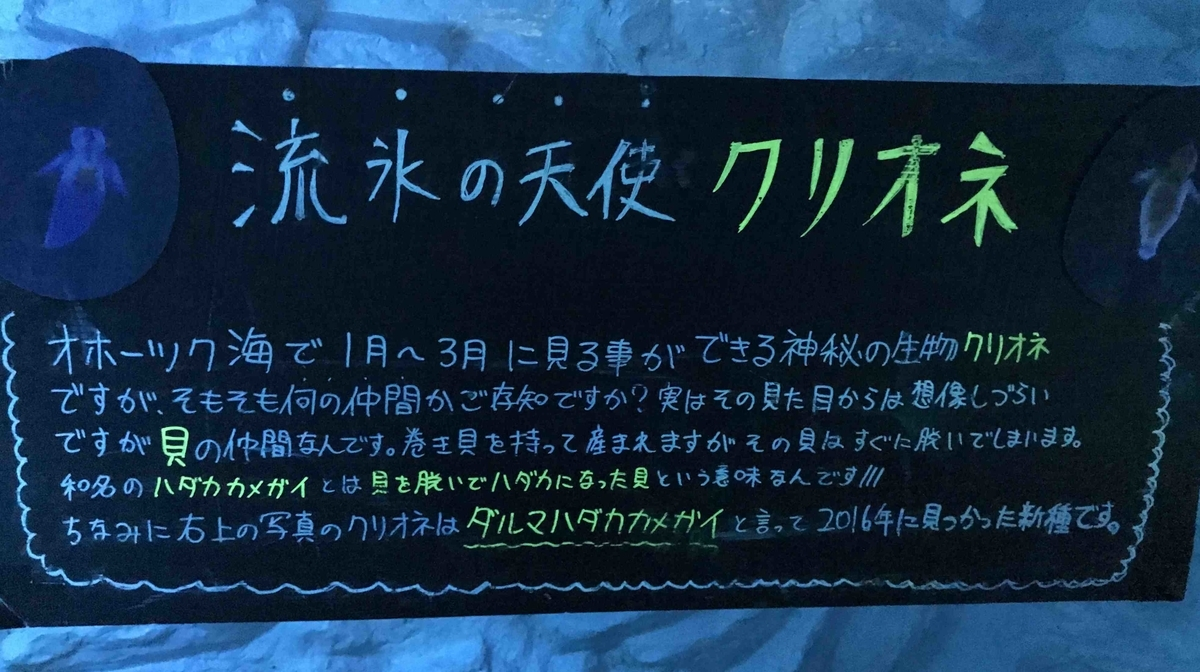 f:id:ryuuzanshi:20200301111416j:plain