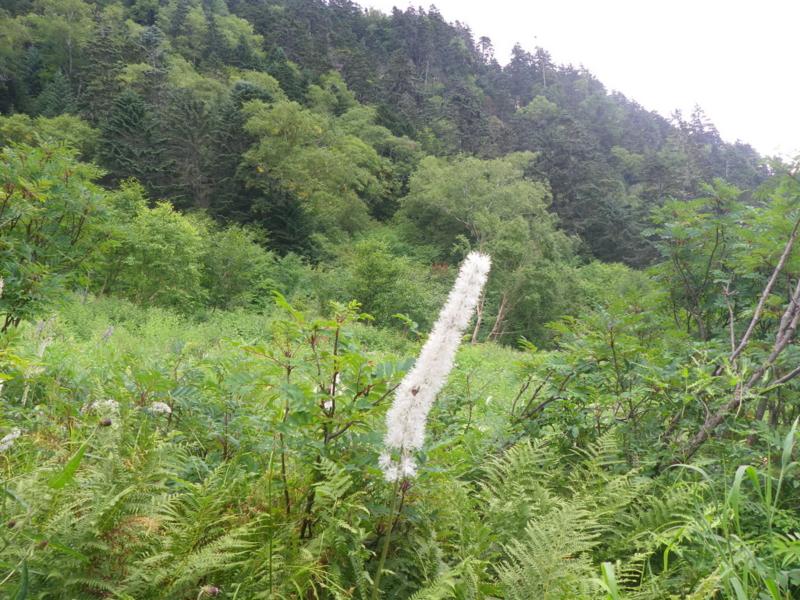 f:id:s-field0808:20121017173157j:image:w360