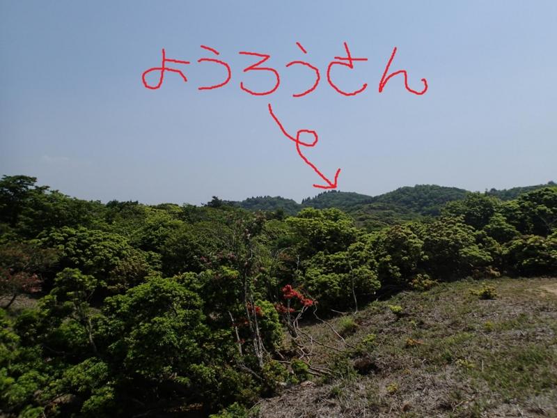 f:id:s-field0808:20140531191351j:image:w360
