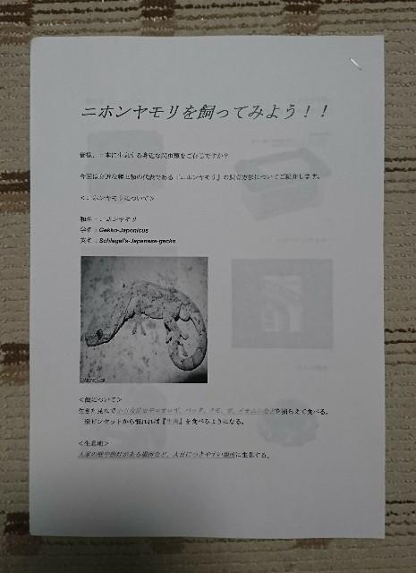 f:id:s-kouda0386:20170330232055j:image