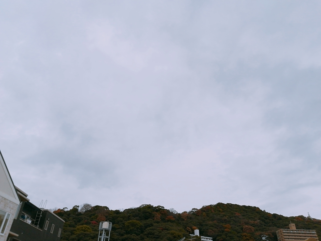 f:id:s-kumakuma:20181212212831j:plain