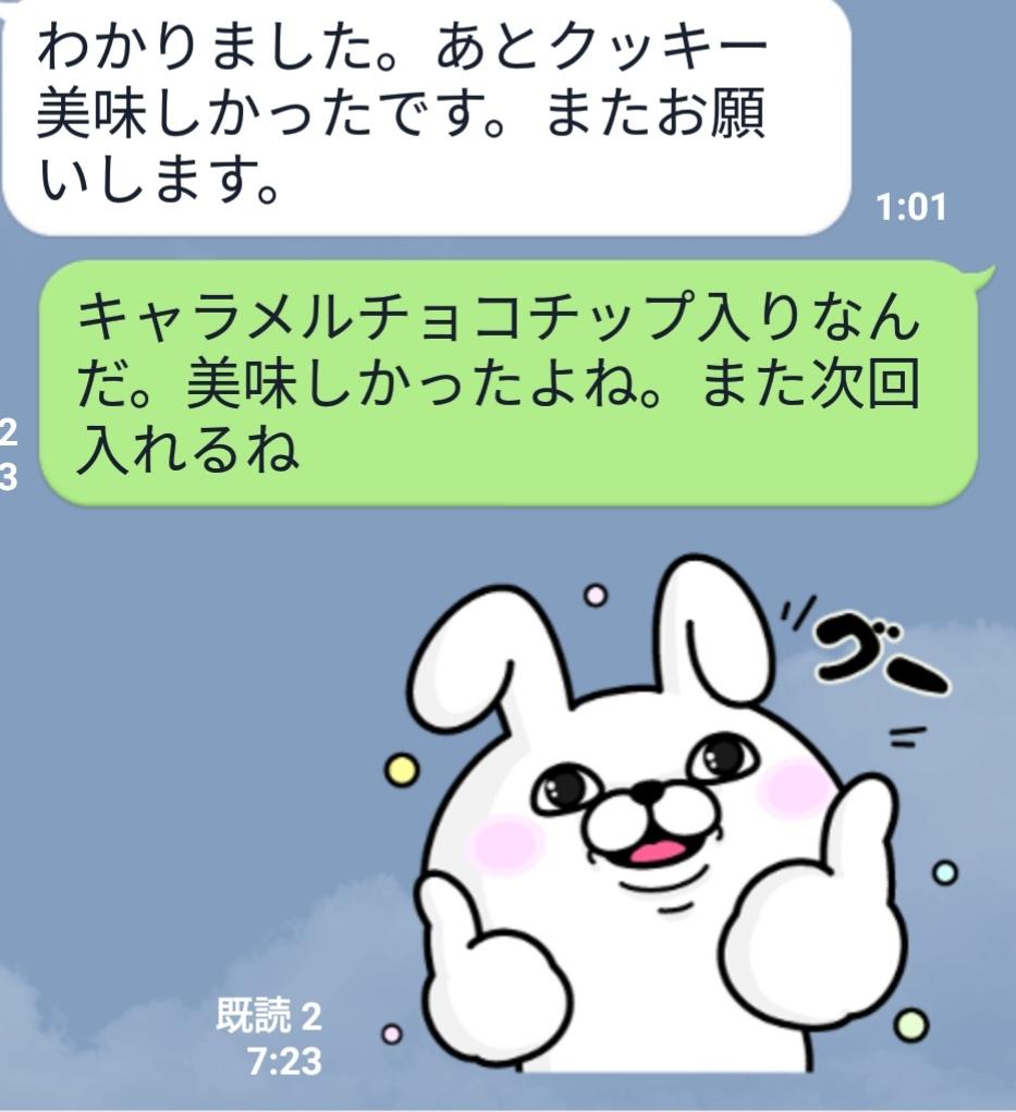f:id:s-kumakuma:20190501205001j:plain