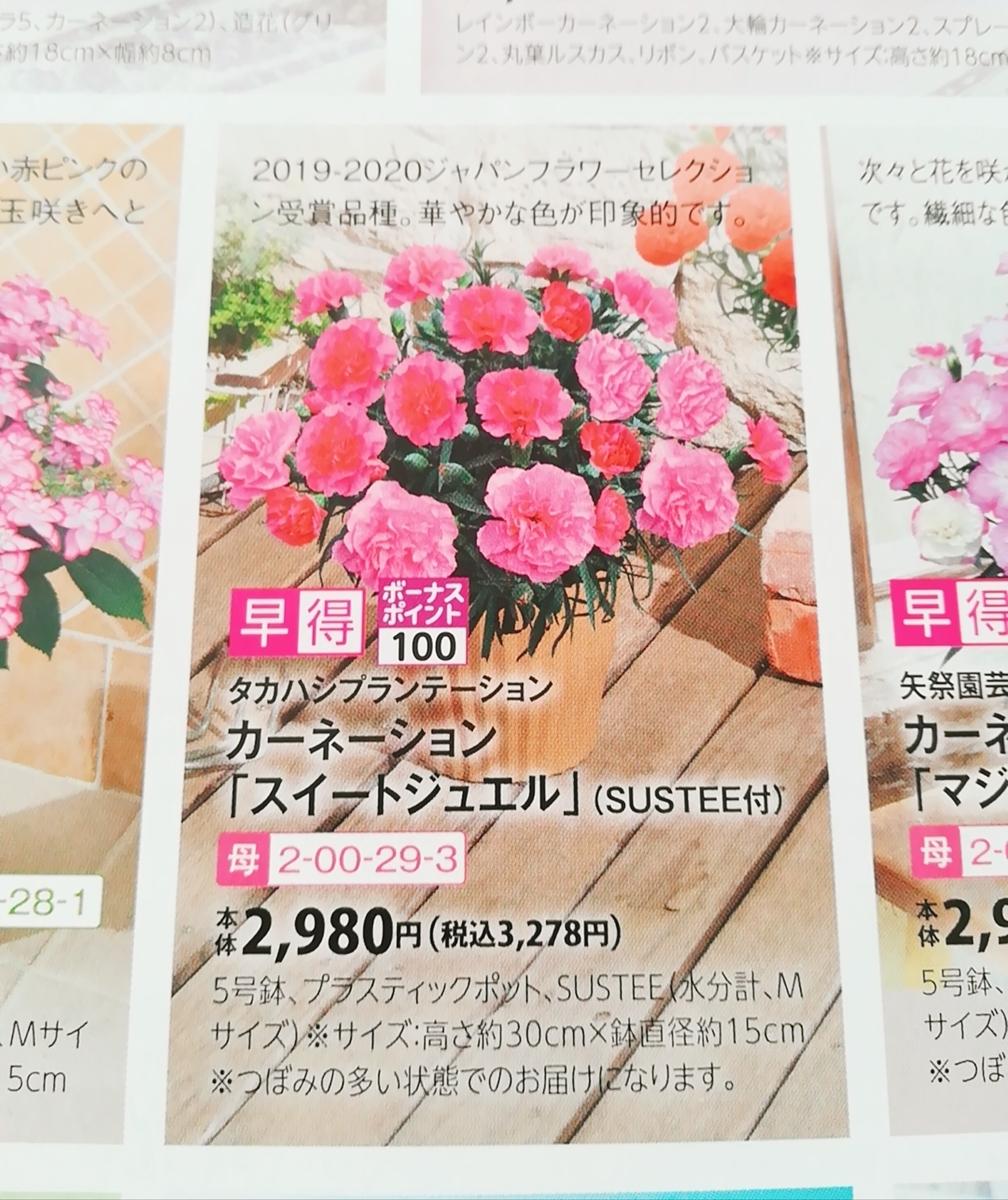 f:id:s-kumakuma:20210316204800j:plain