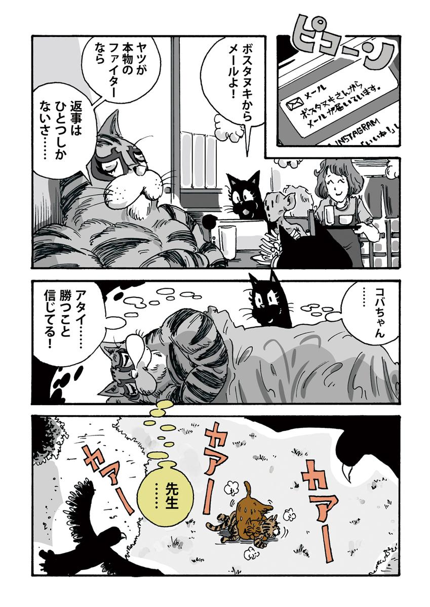 f:id:s-ooguro:20190319163517j:plain