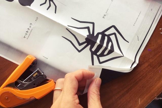 切り紙クモ,図案,今森光彦