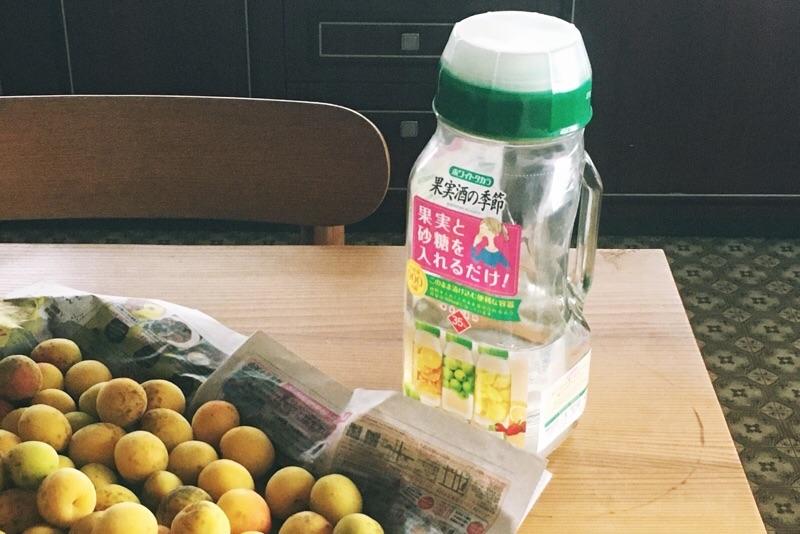 ホワイトタカラ果実酒の季節,手作り梅酒