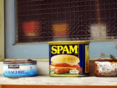 SPAMの缶詰の写真