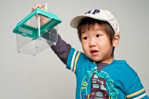 虫かごを持っている男の子の写真