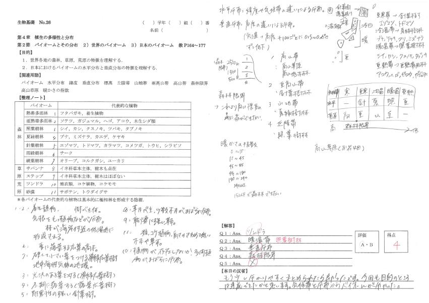 f:id:s-tamagawa:20190417102829p:plain