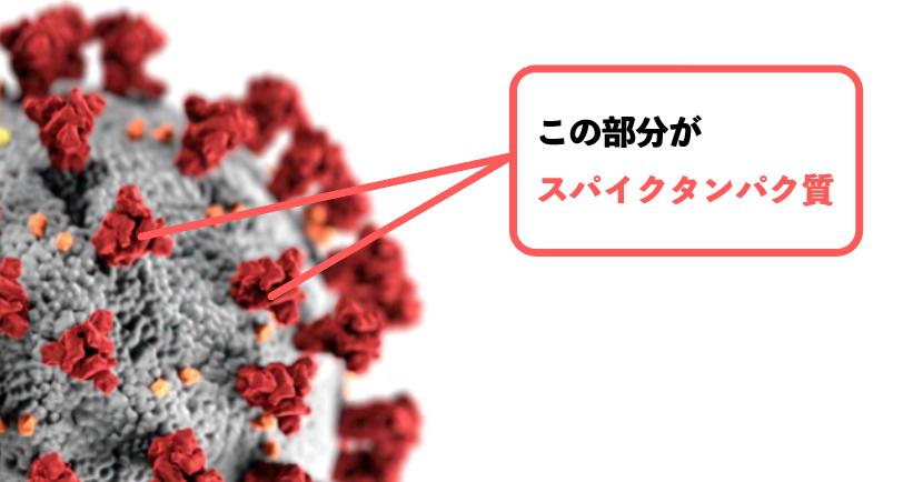 f:id:s-tamagawa:20210528153326p:plain