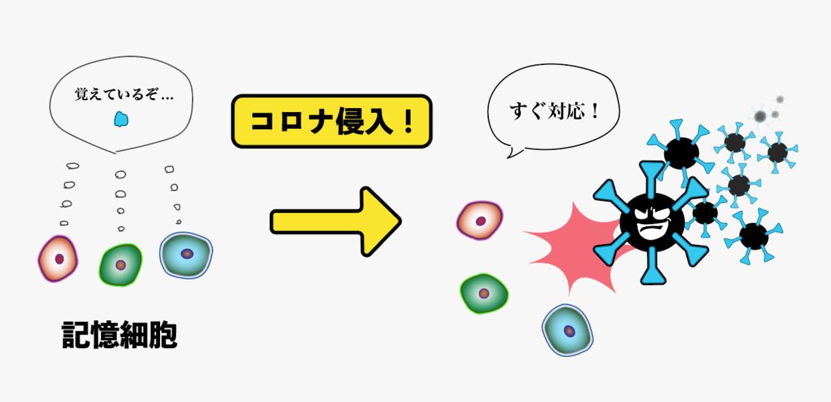 f:id:s-tamagawa:20210621145433p:plain