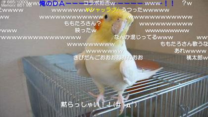 f:id:s01149ht:20090901142740j:image