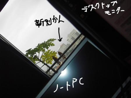 [081230][雨模様]