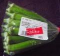 [110908][島野菜(丸オクラ)]