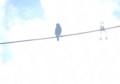 [130614][2羽の小鳥]