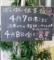 [160403][居酒屋「ぽこぽん」法]