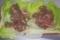 [180225][牛肩ロース肉サンド]