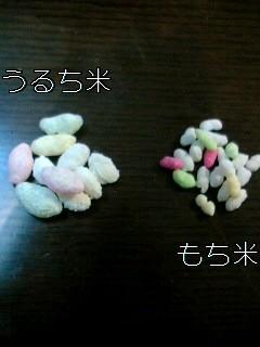 うるち米 と もち 米 の 違い