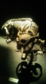 お気に入りの恐竜はエクサエレトドン(´v`人)♥