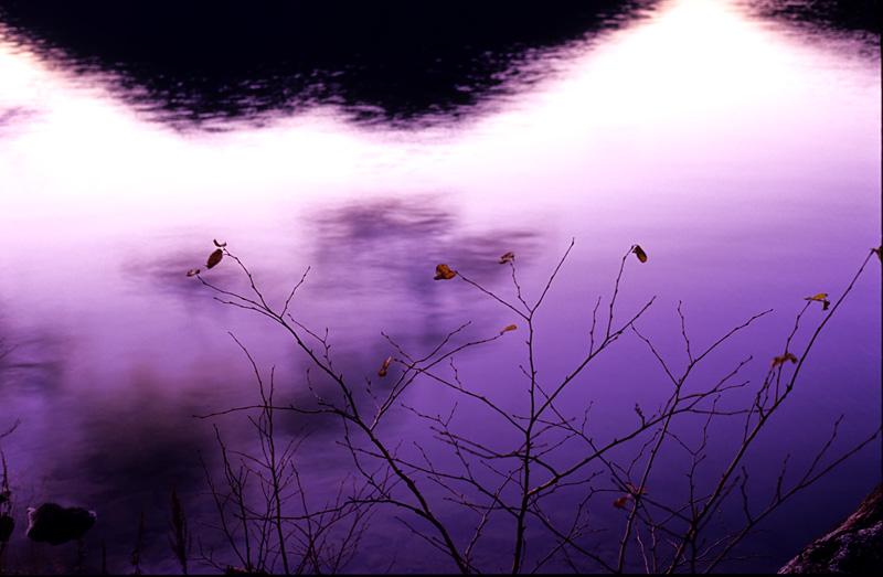 f:id:s_sawada:20051112201821j:image:w400