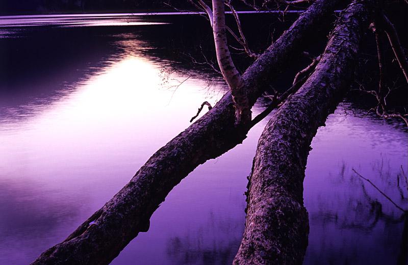 f:id:s_sawada:20051112201900j:image:w400