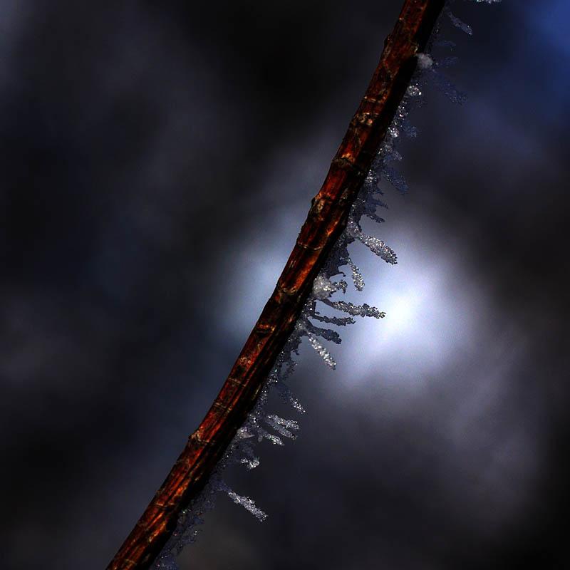 f:id:s_sawada:20070201115837j:image:w600