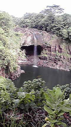 f:id:s_tropical:20100813222635j:image