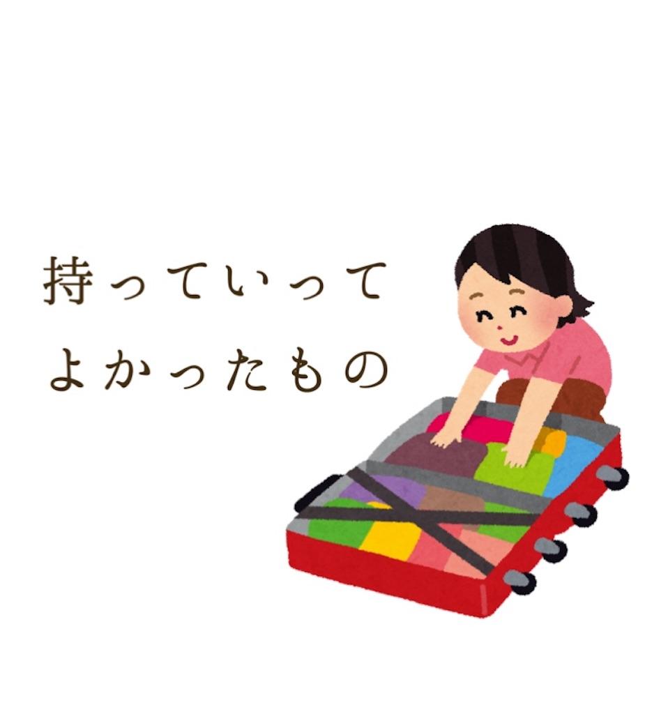 f:id:sa00ku:20180530144244j:image
