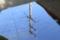 水面に映った電柱と青空