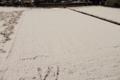 雪 積もった