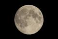 [月]中秋の名月 十五夜 《月齢13.5》