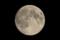 中秋の名月 十五夜 《月齢13.5》