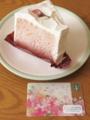 さくらシフォンケーキ/スタバカード
