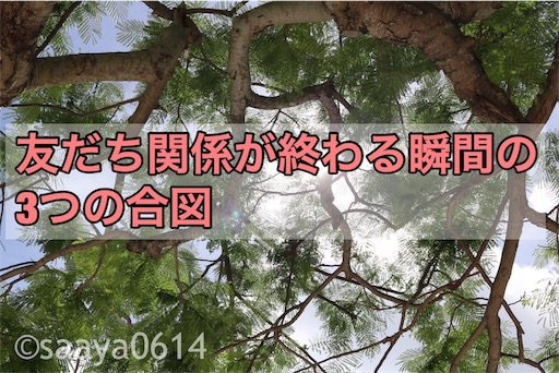 f:id:saayanoblog:20170704213248j:image