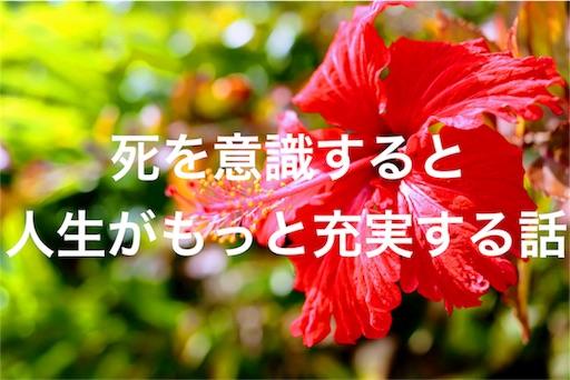 f:id:saayanoblog:20170717190246j:image