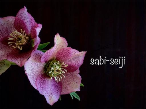 f:id:sabi-seiji:20200108153437j:plain