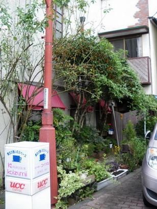 店の脇の緑生い茂る空間