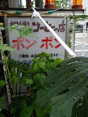 ボンボン桜山店2