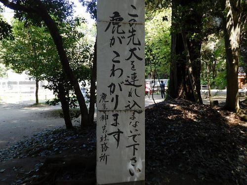 鹿島神宮散策21