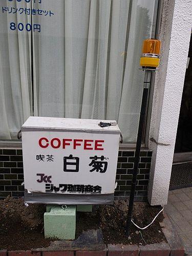 荒畑・白菊12