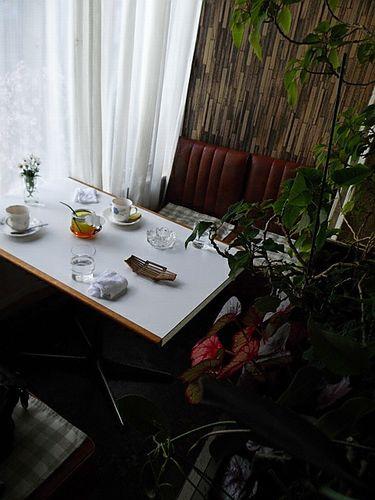 荒畑・白菊10