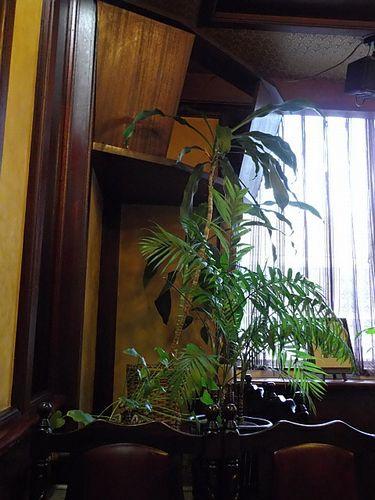 飯能・コーヒー苑7