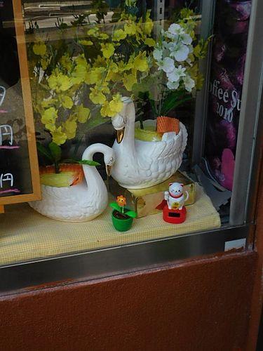豊栄・白鳥3
