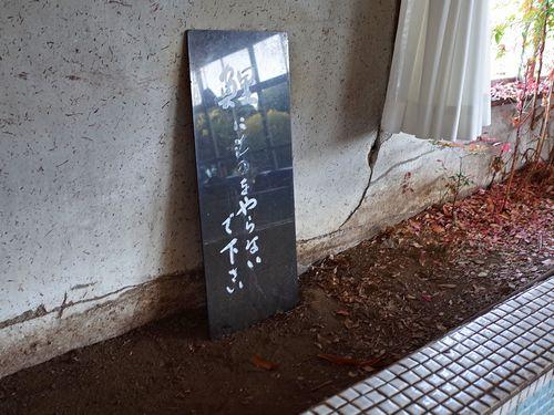 木更津・レストランいわさき22