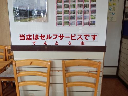 東武日光・てんとう虫3