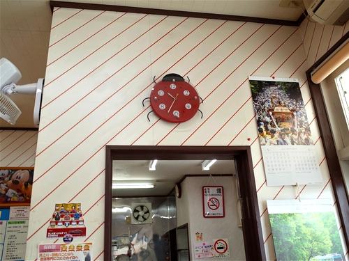 東武日光・てんとう虫8