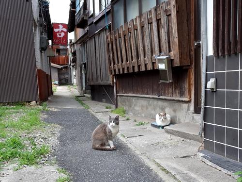 米子・朝日町3