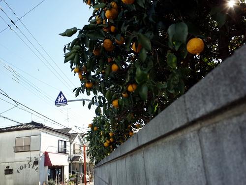 東村山・ポイント2